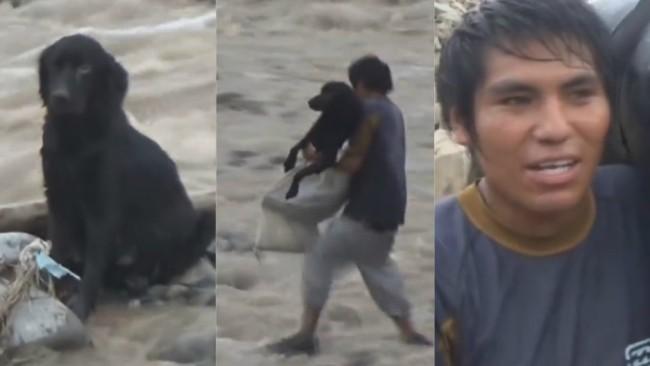 VIDEO  Joven arriesga su vida para salvar a perro que iba a ser arrastrado  por Huayco 5fe1d6ef739